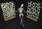 باور بوینت راجب بوکی استخوان علت بوکی استخوان و تاثیز وزرش